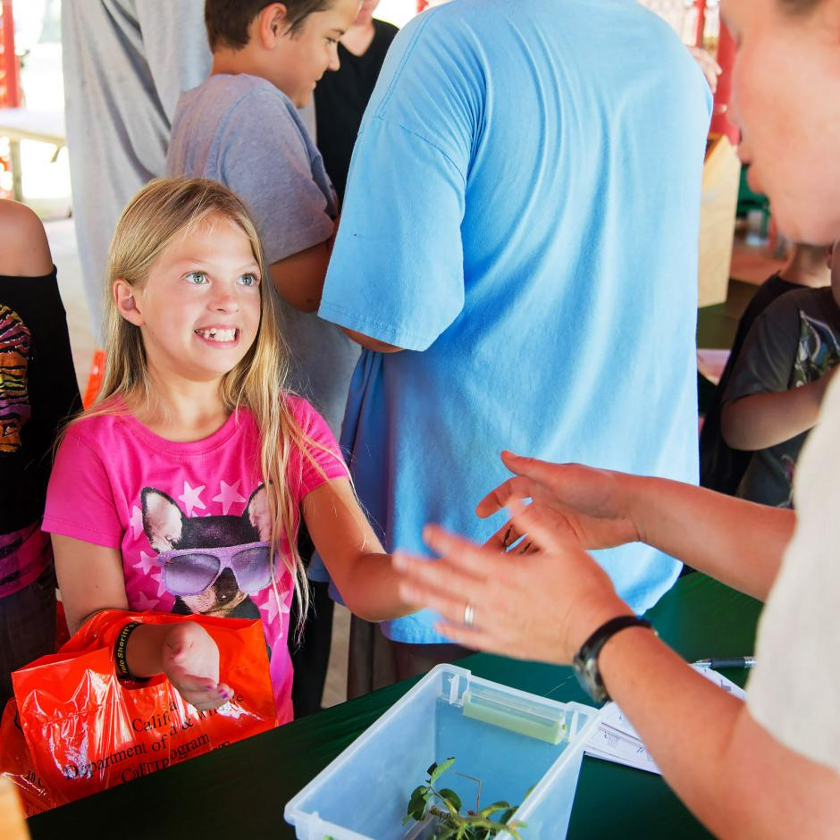 Kids delight in holding various exotic insects with volunteers at YCCA Family Fun Barn, sponsored by Dignity Health, at Yolo County Fair.